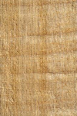 Papyrus paper texture