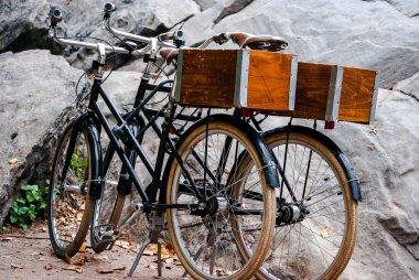 Two retro city bikes rest near rocks