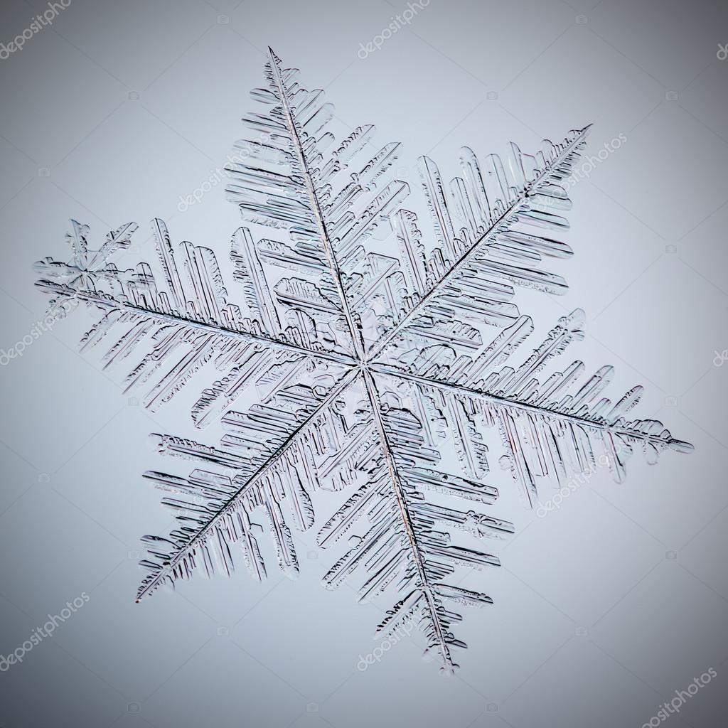 Real macro snowflake