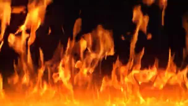 tűzfal
