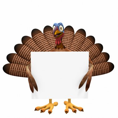 Toon Turkey Sign