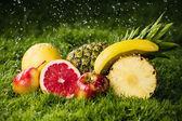 čerstvé ovoce v dešti