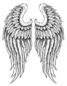 Photo Hand drawn angel wings