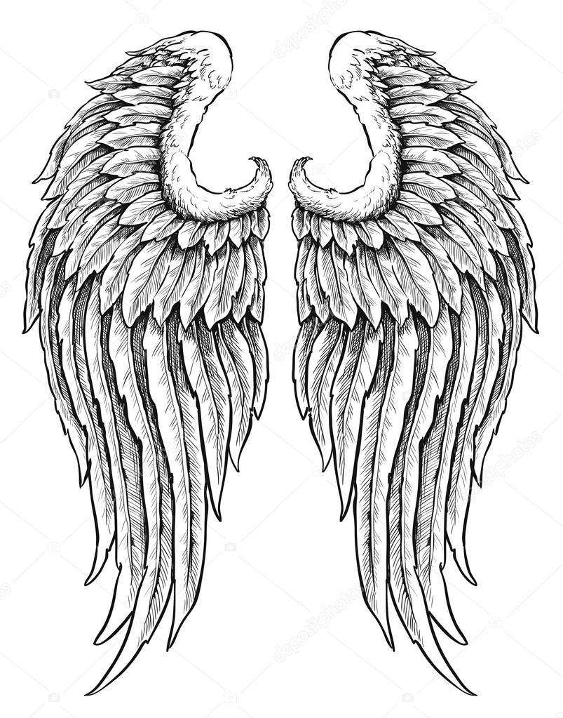 Ali Dangelo Disegnato A Mano Vettoriali Stock Mjh1nkle 27056697