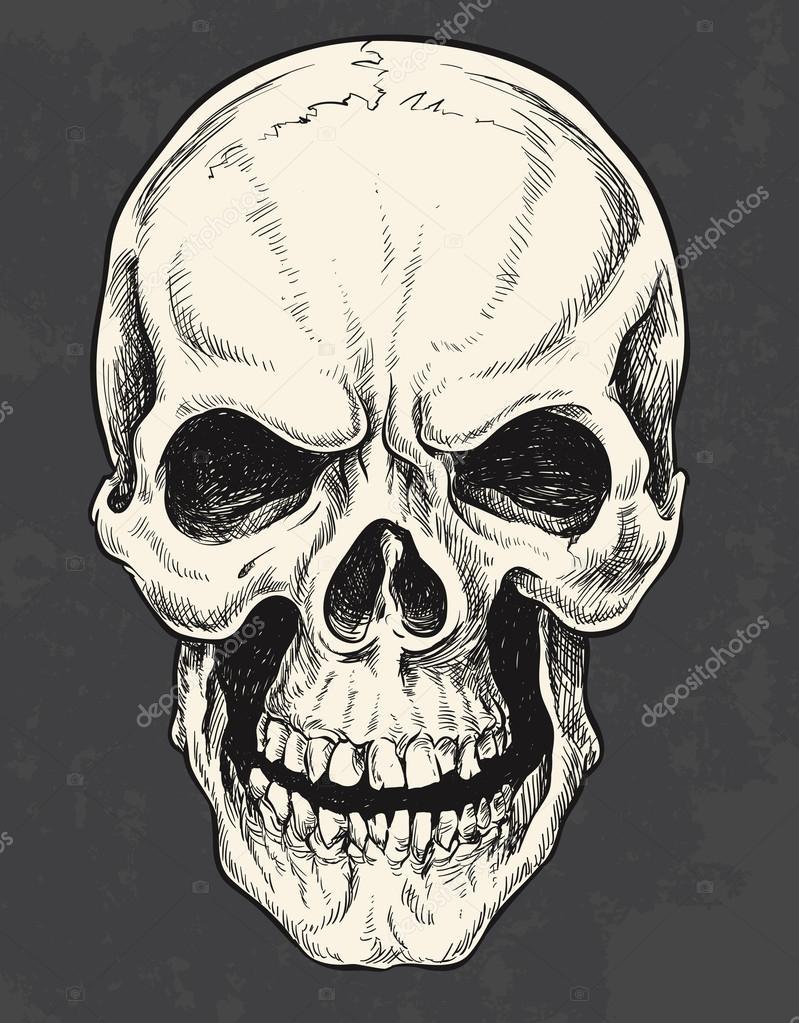 черепа картинки нарисованные