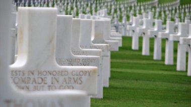White Crosses on a War Memorial