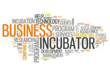 Word Cloud Business Incubator