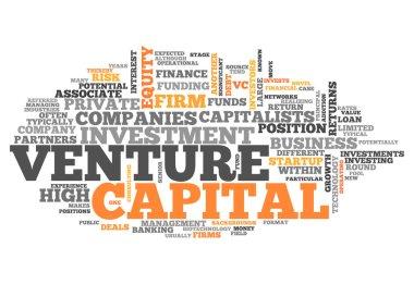 Word Cloud Venture Capital