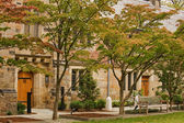 Fotografie Yale Universität