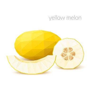 Polygonal fruit - melon. Vector illustration