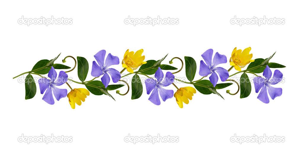 Linea ornamentale con fiori selvatici foto stock for Fiori ornamentali