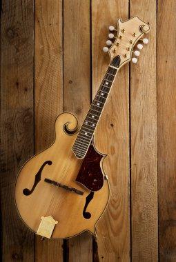 mandolin on wwod
