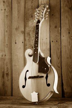 bluegrass mandoline