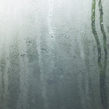 Rain in a window