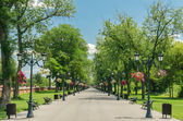 Photo Public Park Alley