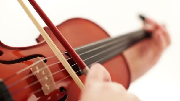 Hegedű