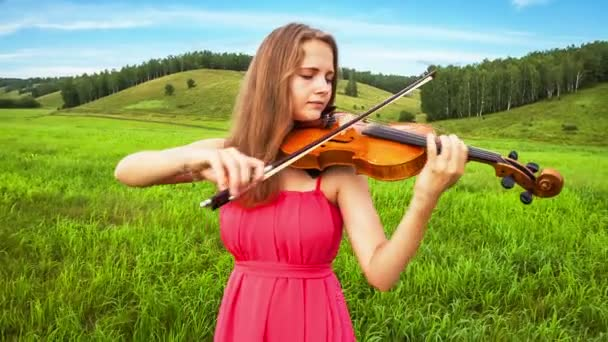 hegedűművész játszik a réten
