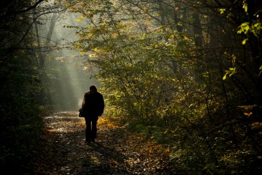Man silhouette walking on the autumn forest road in the light of