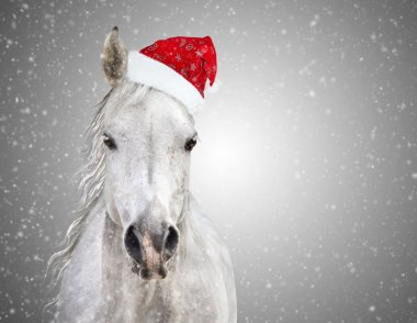 White christmas horse with santa hat on gray background snowfall