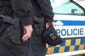 Fényképek a rendőrségi autó állt a rendőrségi jármű, városi rendőrség brno, Cseh Köztársaság