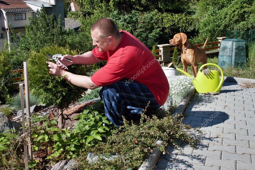 Man working in the garden, summer day in the garden