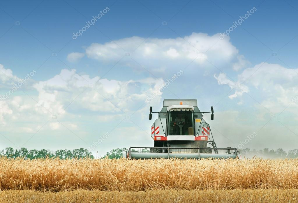 Combine harvester at work harvesting a field of crops