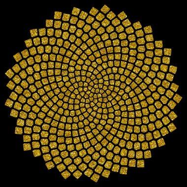 Sunflower seeds - golden ratio - golden spiral - fibonacci spiral,