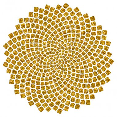 Sunflower seeds - golden ratio - golden spiral - fibonacci spiral,