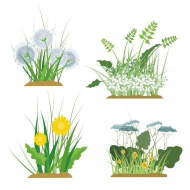 A set of floral and grass design elements, vector illustration series.