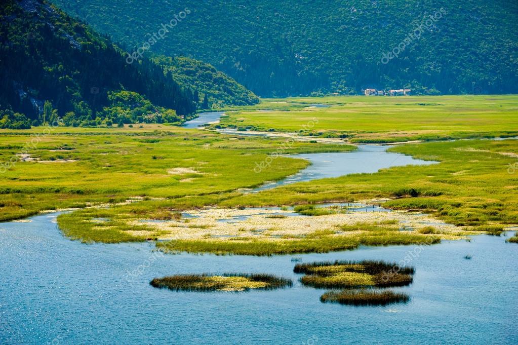 Panoramic view of swamp lake