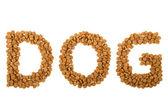 slovo pes s granulí