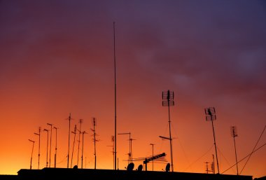 antennas on sunset