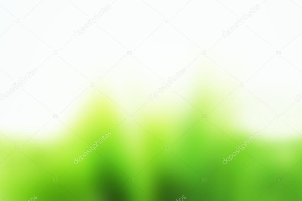 Fondo Blanco Con Verde: Fondo Blanco Y Verde Simple