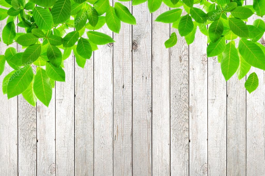 Green Leaves On Wood Background Stock Photo 169 Kritchanut