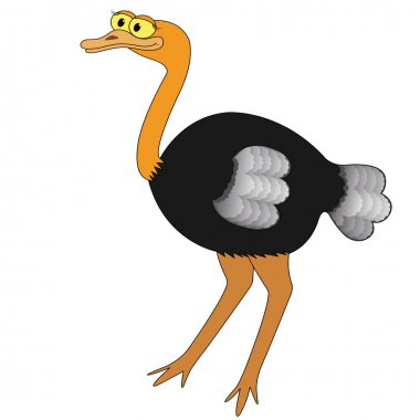 Ostrich Cartoon Vector Illustration