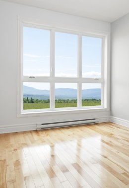 Empty room and summer landscape seen through the window