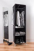 Photo Clothes organizer with black and white clothing