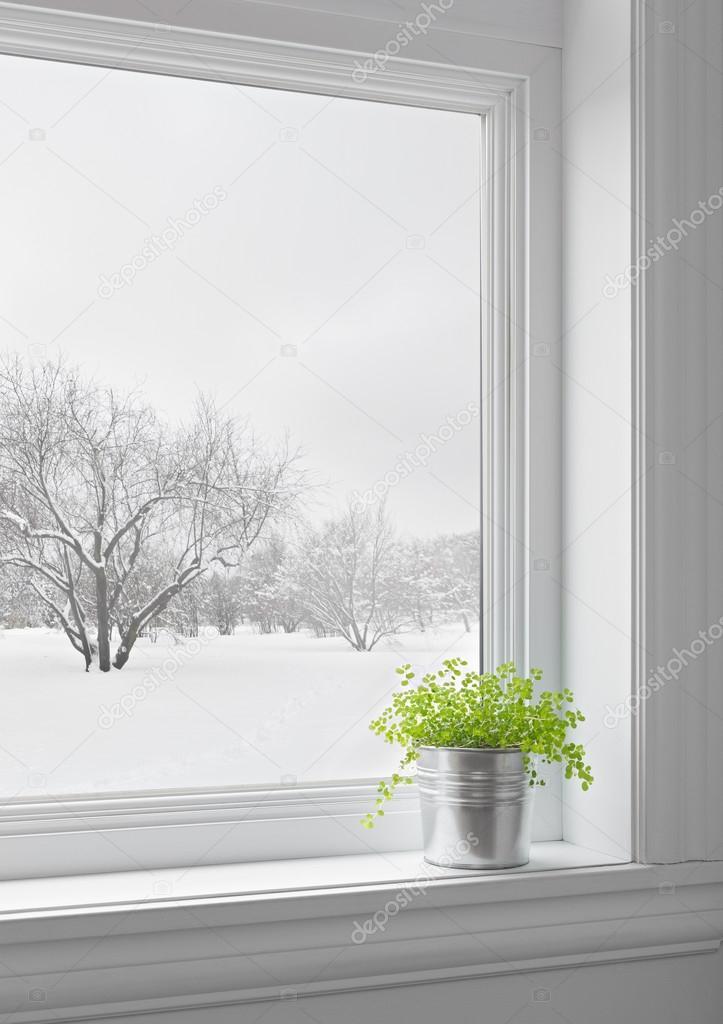 Pianta verde e paesaggio invernale visto attraverso la finestra foto stock goodmoodphoto - La finestra verde giugliano ...