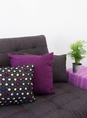 Sofa with colorful cushions and green plant