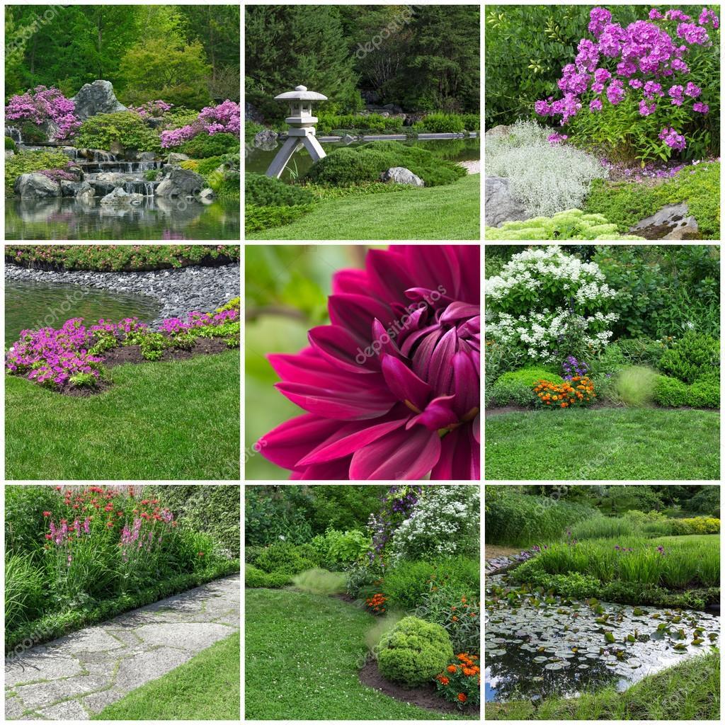 Blooming summer gardens