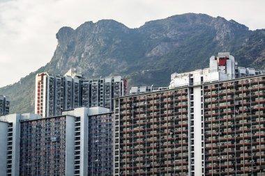 Hong Kong Housing landscape under Lion Rock