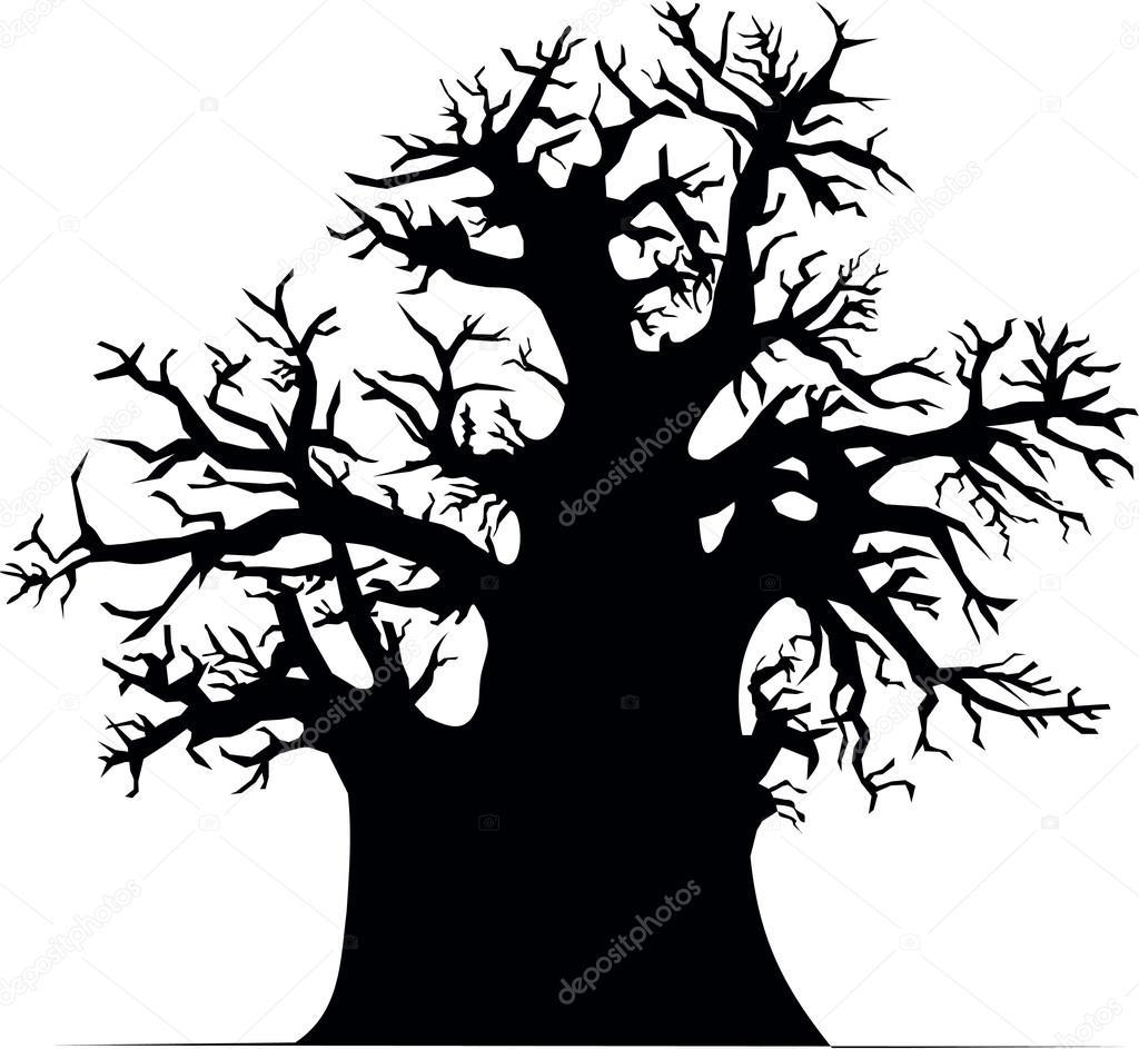 Silhouette of baobab tree