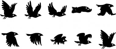 Flying bird sequence