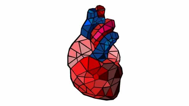 menschlichen Herzschlag