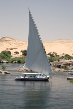 Nile Riverbank