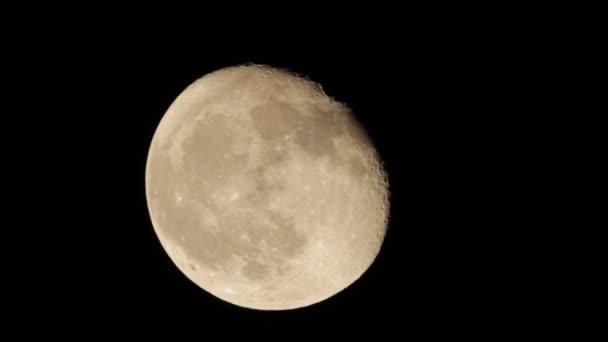 Hold közelről Hd