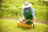 Woman with vegetable