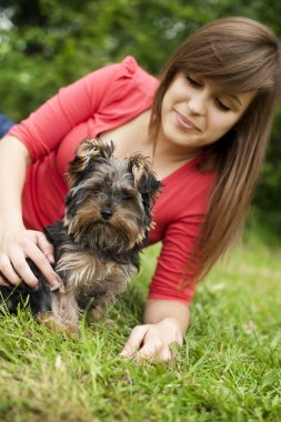 Yorkshire terrier puppy with young woman