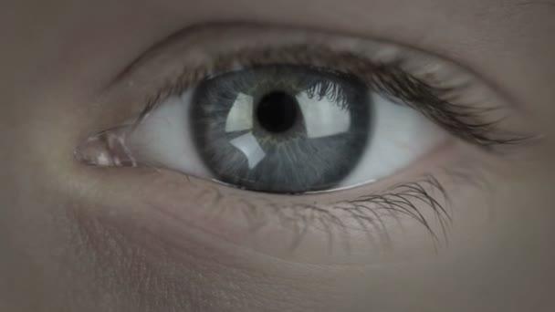 目の前にお金だけjen peníze v očích