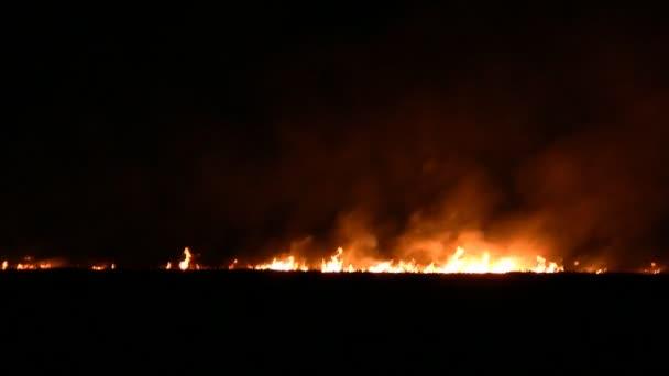 Night fire in the field